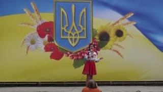 25-я годовщина Независимости Украины.Васильков 24 августа 2016.