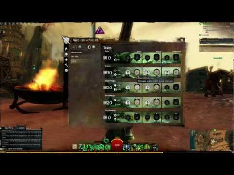 Guild Wars 2 Necromancer Conditionmancer Damage Build
