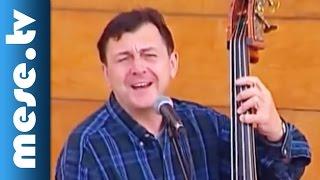 Kányádi Sándor - Radványi Balázs: Madáretető (gyerekdal, koncert részlet)