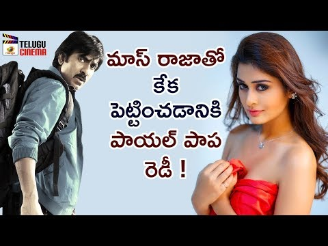 RX 100 Heroine Payal Rajput To Act with Ravi Teja | Nabha Natesh | VI Anand | Ram | Telugu Cinema