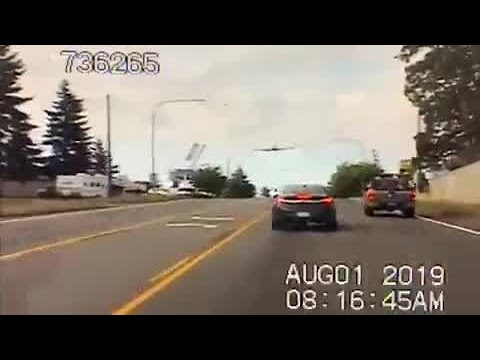 Pilot lands on Washington road, stops at red light