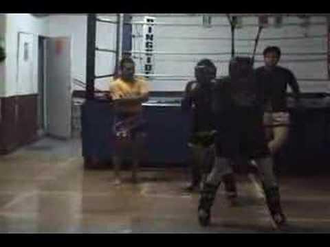 pitbull gym sparring