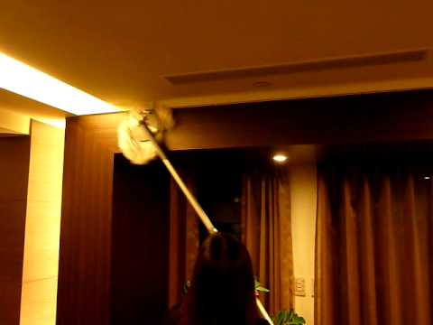 Up spin mop Reach Up High with DynaMop