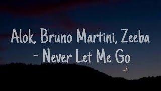 Ouça Alok Bruno Martini Zeeba - Never Let Me Go •Sub español•