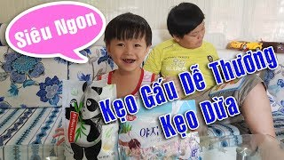 Tin Và Anh Hai Ăn Thử Kẹo Dừa Hàn Quốc Và Kẹo Gấu Trúc Nhật Bản ❤ TinTin TV ❤