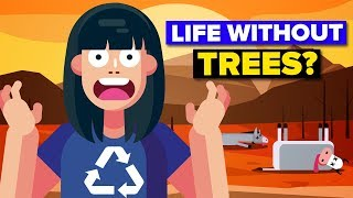 Could Humanity Survive Without Trees?