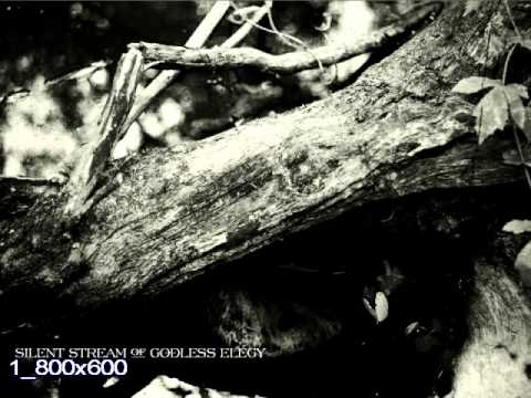 Silent Stream Of Godless Elegy - The Wizard