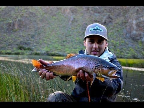 patagonia рыбалка