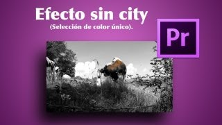 Crear efecto sin city en Premiere PRO CS6 (Seleccion de color unico)