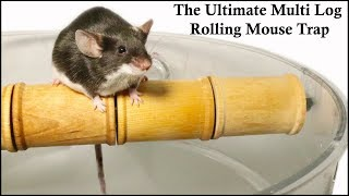 The Ultimate Multi Log Rolling Mousetrap. Mousetrap Monday