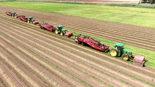 Harvest of first year onion sets | John Deere + VSS Amac VRU XL | Plantuien oogst Loonbedrijf SvZ