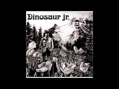 Dinosaur Jr - Cats In a Bowl