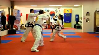 Martial Arts Competition Board Breaking