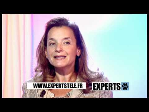 Hemorroide Externe Prolapsus – Cause Hemoroide