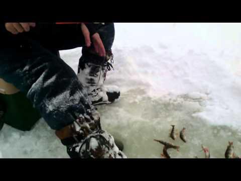 рыбалка на терсянке вольск