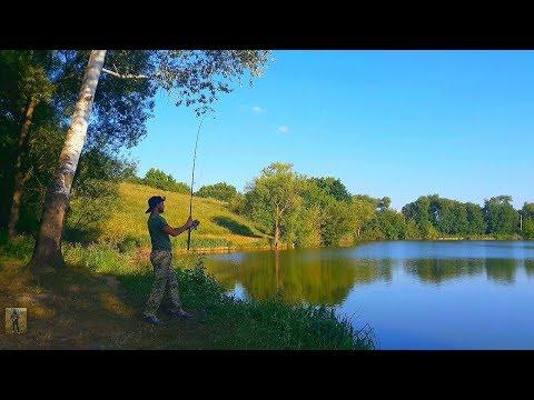 Рыбалка в жару. Ловля карася на донку. Ловля на жмых. Рыбалка с ночевкой