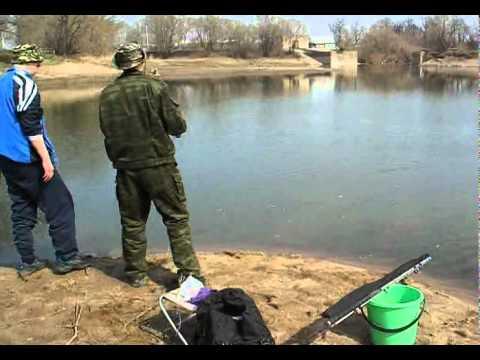 на что ловить в чистых прудах