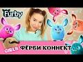 Furby Connect: учим Ферби говорить на русском. Как скачать приложение и играть