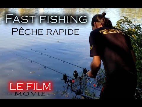 Pêche rapide d'une rivière inconnue – Fast carp fishing at new river – USA.