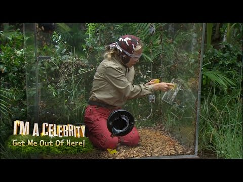 Kendra And Mel's Bushtucker Trial: The Critter Conveyor | I'm A Celebrity...Get Me Out Of Here!