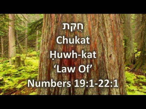 Torah Portion Chukat
