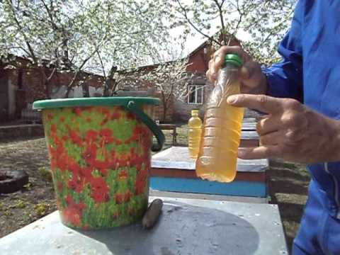 Кормушки для пчел из пластиковой бутылки