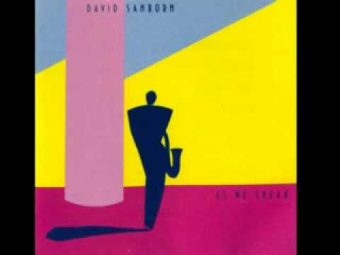 David Sanborn ~ Rain On Christmas (1981)