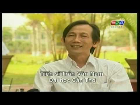 Kết thúc chiến tranh Việt Nam - Tập 3: Hòa bình