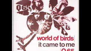 Watch Q65 World Of Birds video
