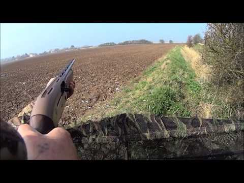 pigeon shooting in lincolnshire UK