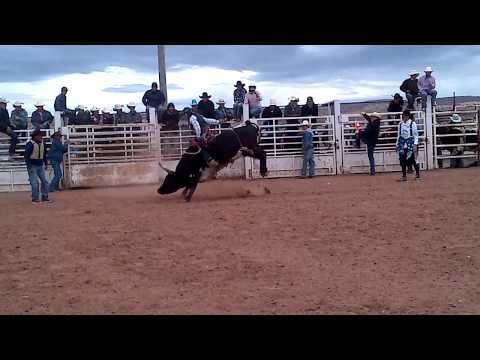 Cody V. Cisco Kid