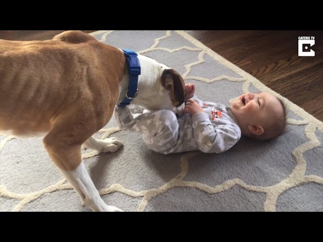 Watch 9-Month-Old Erupt In Uncontrollable Giggles When Puppy Tickles Him