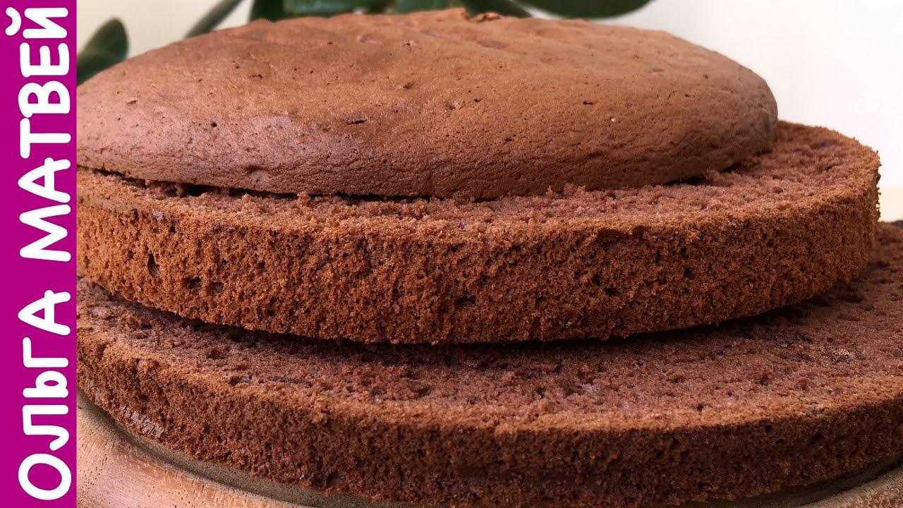 Как сделать классический бисквит для торта
