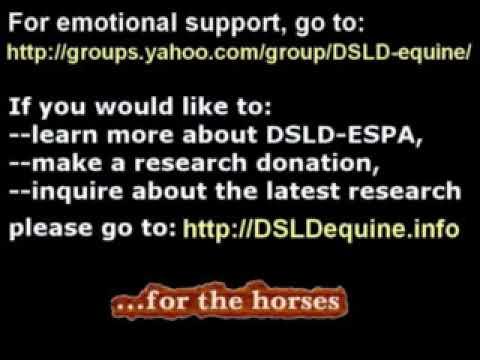 Equine DSLD-ESPA