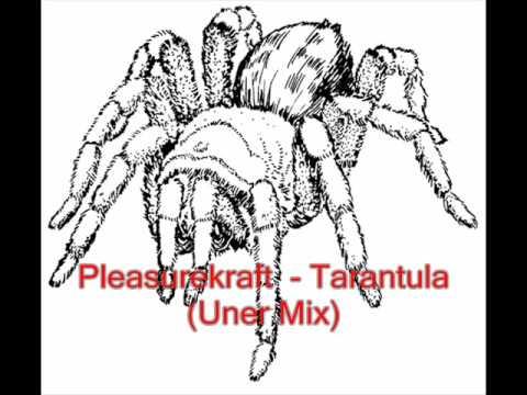 Tarantula Download Pleasurekraft Pleasurekraft Tarantula