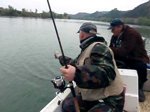Рыбалка в испании сомы гиганты на