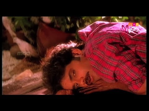 Ninne Pelladatha : Yeto Vellipoindi Manasu video