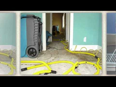 Mold Remediation Costs Atlanta
