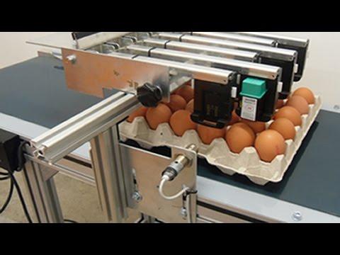 Expiry Date Ink Jet Printer for Egg Automatic Codes Printing Machinery huevos máquina de impresión