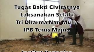 Hymne IPB (Instrument + Lyrik)