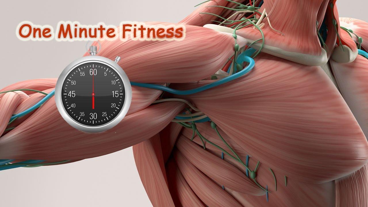Muscoli: caratteristiche e classificazione