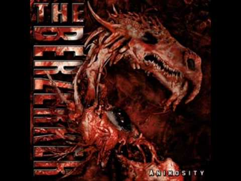 The Berzerker - Eye for an eye (animosity)