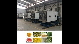 Industrial Fruit, Vegetable and Food Freeze Dryer