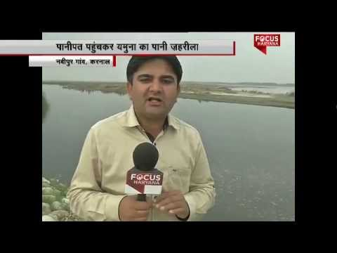 Polluting Yamuna River: Who is responsible?