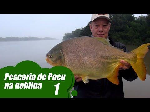 Pescaria De Pacu Na Neblina - Bloco 1