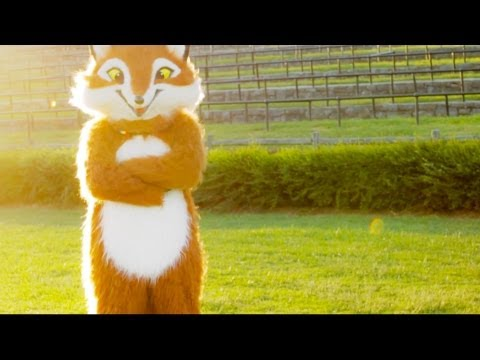 what Does The Fox Say? - the Fox Song Originally By Ylvis (cover) video