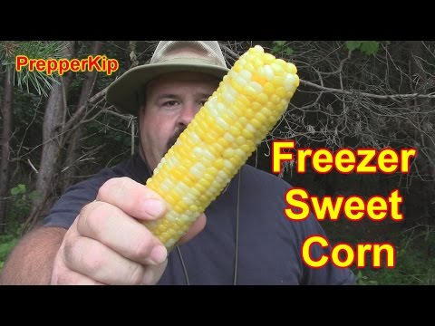 Time for some Sweet Corn / PrepperKip