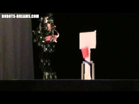 Robot Japan 5: Autonomous Basketball