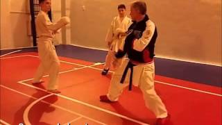 3. Karate training - 2016