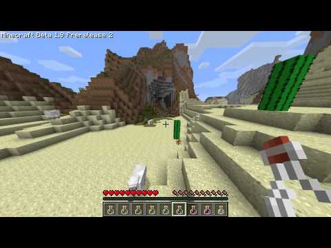 Minecraft Beta 1.9 Potions and Enderpearls